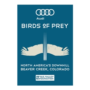 AUDI BIRDS OF PREY WORLD CUP
